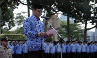 Lamsel Gelar Upacara HUT Provinsi Lampung, Bersama HUT  Satpol PP, Damkar, dan Linmas.