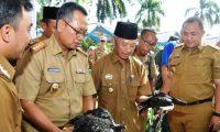 Gubernur Ridho Targetkan Lampung Lumbung Ternak Nasional