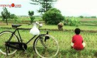 Keliling Indonesia
